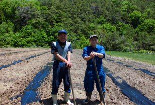 2020.5.22 白瓜の畑の種まきの準備をしました。
