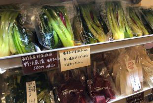 野沢菜漬の販売が始まりました!